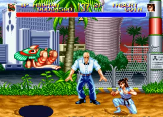 World-Heroes-2-PC-Game-screenshot