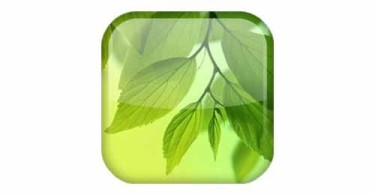 Leaf-Live-Wallpaper-Android-logo