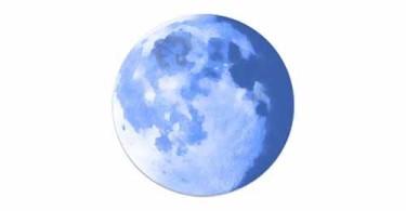 pale-moon-logo-icon